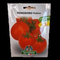 Semilla de Tomate Padano