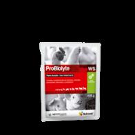 Probiolyte Ws Sobre 15g