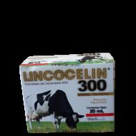 LINCOCELIN 300 20ml