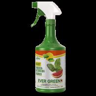 Fungicida Bactericida Orgánico Ever Green 1L